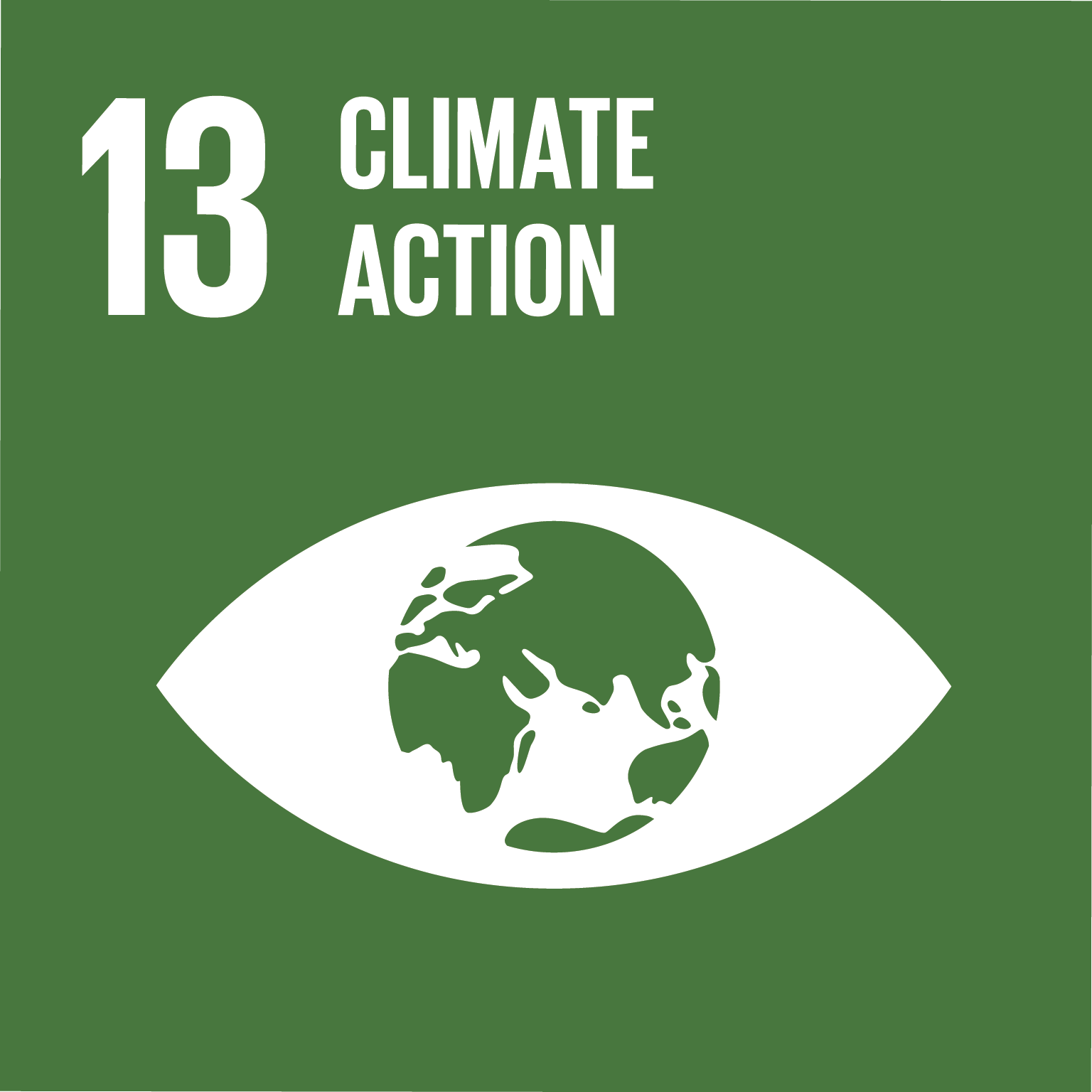SDG 13 Posters