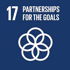 SDG 17 posters