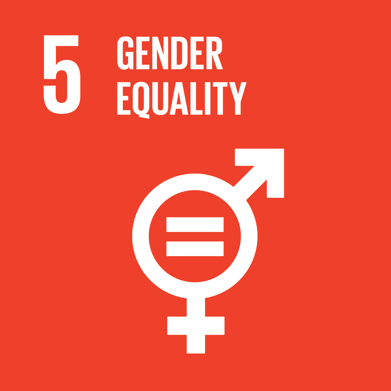 SDG 5 Posters
